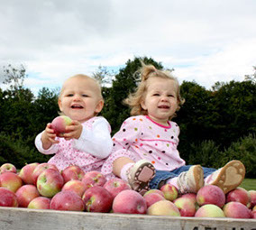 Children sitting on apples at Gould Hill Farm