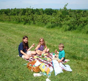 The Bassett Family having a picnic at Gould Hill